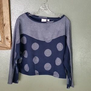 Anthro Postmark silver and navy crop sweater (169)